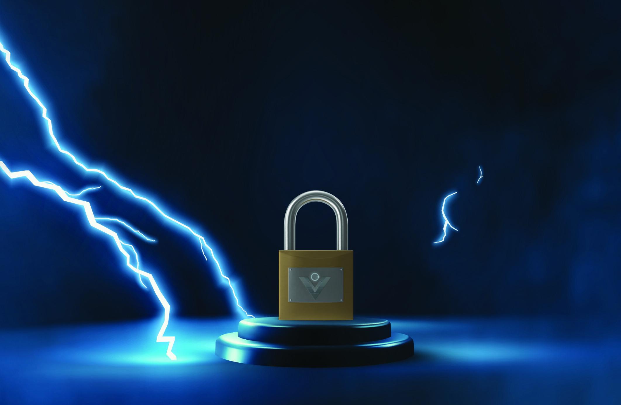 viLogics Network<br> Security Service